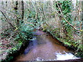 SW9863 : Cornish Brook 2 by Jonathan Billinger