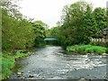 SE1338 : River Aire below Hirst Weir by Rich Tea