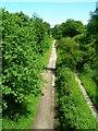 SJ9382 : Middlewood way near Wood Lanes by John Darch