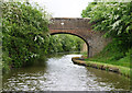 SO9263 : Bridge 36, Worcester and Birmingham Canal by Pierre Terre
