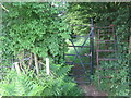 TQ5063 : Ladder Stile in Lullingstone Country Park by David Anstiss