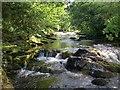 SX6359 : River Erme above Harford (2) : Week 24