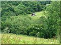 ST6264 : 2009 : Haymaking near Publow Farm by Maurice Pullin