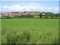 SD4663 : Torrisholme Barrow from Barley Cop Lane by Ian Taylor