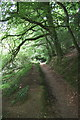 SW7525 : Footpath south of Helford by Graham Loveland