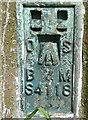 SE1931 : Bench mark on the triangulation pillar, Ned Lane Tong by Humphrey Bolton