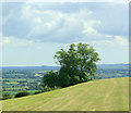 ST6065 : 2009 : South on Maes Knoll by Maurice Pullin
