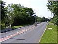 SJ8902 : The Droveway by Gordon Griffiths