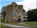 W2687 : Castles of Munster: Kilmeedy, Cork by Mike Searle