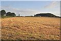 SX3765 : Toward New Mushton Farm and Keason Plantation - Pillaton by Mick Lobb