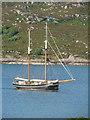 NM6372 : Lotos - Sailing Lugger : Week 28