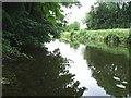 N3850 : Royal Canal at Ballina, Co. Westmeath by JP