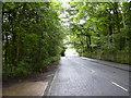 SD7122 : Johnson New Road, Hoddlesden by robert wade