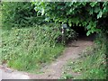 SP9214 : Entrance to Warden's Wood, College Lake by Chris Reynolds