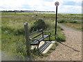 TR1367 : Bench on Saxon Shore Way by David Anstiss