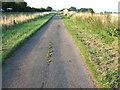 TF4109 : Garden Lane, Wisbech St Mary by Richard Humphrey