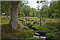 SU2705 : Warwickslade Cutting: felled trees : Week 32