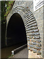 SJ5243 : Brick Arch : Week 33