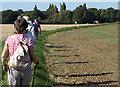 TL1351 : Bedfordshire Walking Festival by Dennis simpson