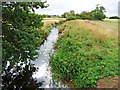 TL1763 : River Kym from Footbridge at Hail Weston Ford by Christine Matthews