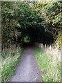 NS7774 : Cumbernauld's Dark Path by Robert Murray