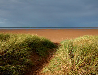 NU0645 : Path through the dunes by Mark Anderson
