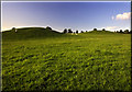 SP7333 : Thornborough Mounds. by Cameraman