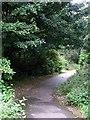 Dist:0.4km<br/>Path from Westfield to Broadwood Loch.