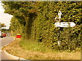 ST8324 : Motcombe: Motcombe Turnpike signpost by Chris Downer