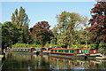 SU9949 : Narrowboats at Guildford, Surrey : Week 39