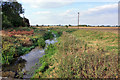 TA0345 : Catchwater Drain - northwards by Peter Church