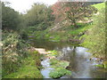 SX2075 : The River Fowey at Trezibbett by Rod Allday
