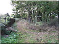 SJ6880 : Bridleway Junction At The Ashes by Peter Whatley