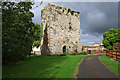 R5338 : Castles of Munster: Tullovin, Limerick by Mike Searle