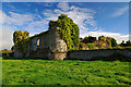 S0214 : Castles of Munster: Castle Grace, Tipperary by Mike Searle