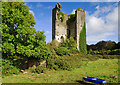 R4872 : Castles of Munster: Kilkishen, Clare by Mike Searle