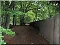 SP8910 : The Long Fence beside the footpath through Buckland Hoo wood by Chris Reynolds