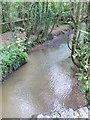 S7909 : Tintern Stream near Tintern Abbey by Eirian Evans
