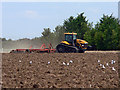 TL1169 : Post Harvest ploughing and harrowing by John Webber