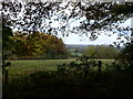 SJ5257 : View west from Peckforton  wood by Eirian Evans