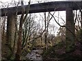 Dist:0.2km<br/>A single track railway viaduct that once carried the mineral line connecting the Neilston pits and the Forth & Clyde Canal at Twechar it is now utilised as part of the north Kilsyth path network.