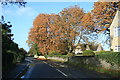 SP3903 : Autumn colour in Standlake by andrew auger