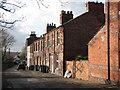 SK5540 : Radford Grove Lane : Week 46