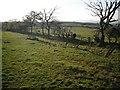 NS8371 : Old track, Drumriggend by Richard Webb