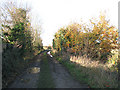 TM2084 : View north-west along dismantled trackbed of the Waveney Valley Line by Evelyn Simak