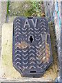 TG0524 : Water Inspection Cover, The Street, Themelthorpe by Adrian Cable