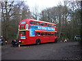 TL9927 : A Routemaster bus in Highwoods Country Park by PAUL FARMER