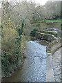 SW9172 : Little Petherick Creek by Bill Henderson