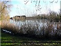 TL2971 : Ornamental lake at Hemingford Grey by Gordon Brown