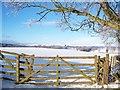 NS7098 : Field Entrance Near Mains Of Burnbank : Week 52
